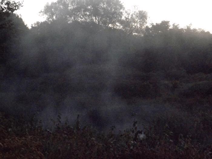 mist-over-pond-fall