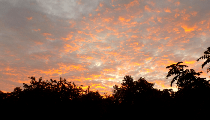 sunrise-orange-pink-morning-fall