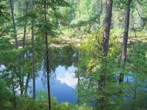A View of Gem Lake from the Kag Trail in Samuel de Champlain Provincial Park
