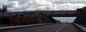 Wildlife overpass built south of Sudbury in 2012 allows moose, deer, wolves, and bear to cross Highway 69 without running into traffic.