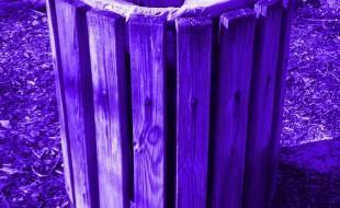 purple-trash-can