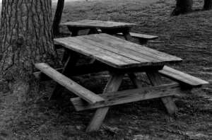 picnic-tables