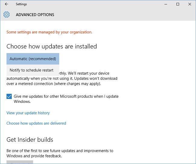Wade into Windows 10