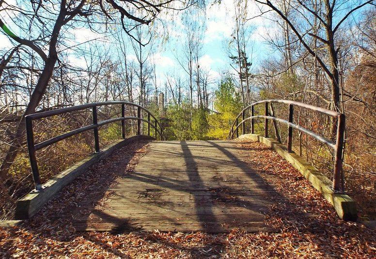 footbridge-in-late-fall_23004643752_o